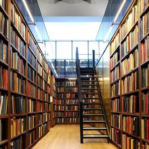 Библиотеки Лопатинского