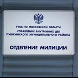 Отделения полиции Лопатинского